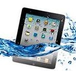 Seal Shield for iPad