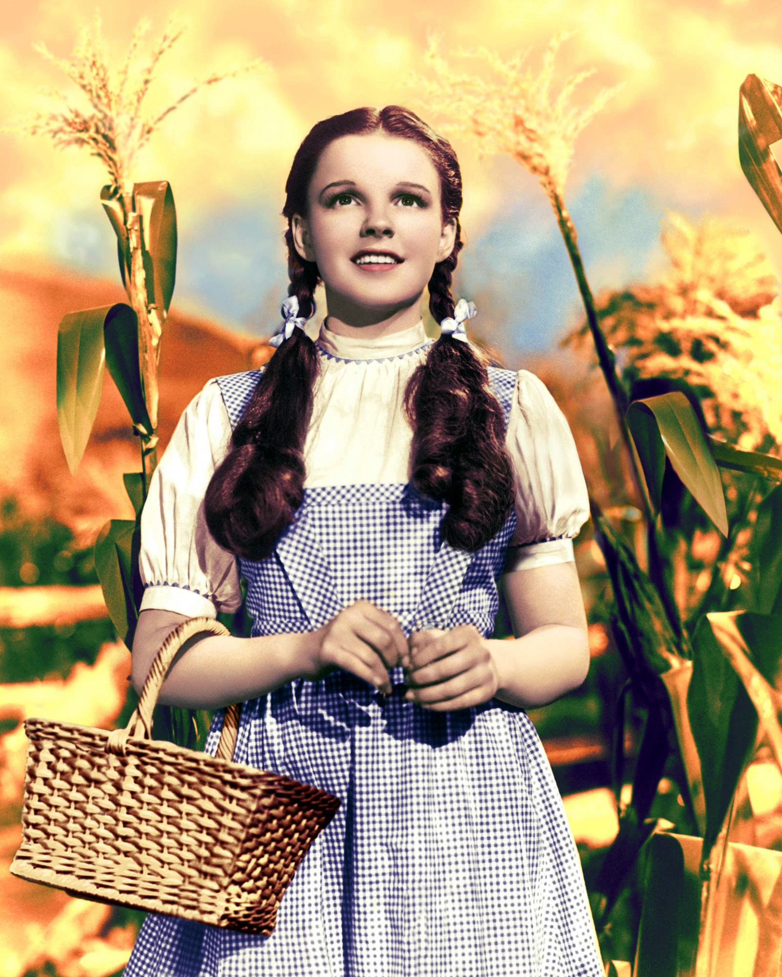 Wizard of Oz Judy Garland Dress