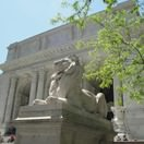 New_York_Public_Library_Lion_May_2011_thumb.jpg